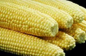Sweet corn commodity